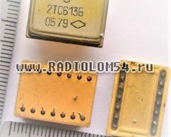 kts613-mikroshema